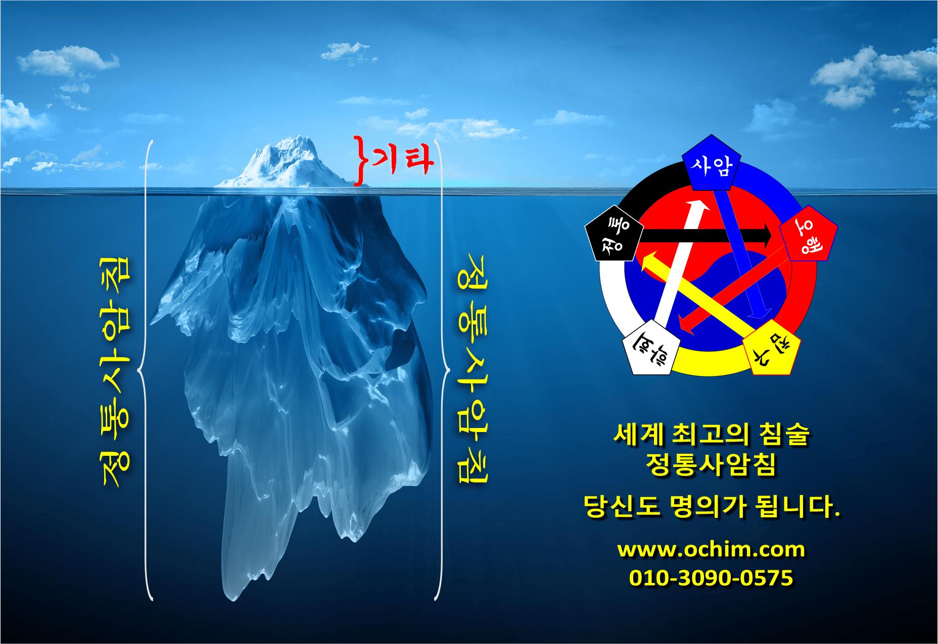 Iceberg ocean - 임상 사례