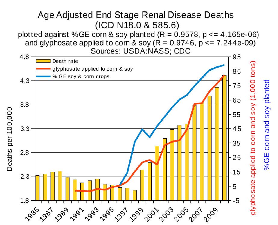 gmo18 end stage renal disease deaths - 비과학적 양의학 73 - 신부전 치료 방법
