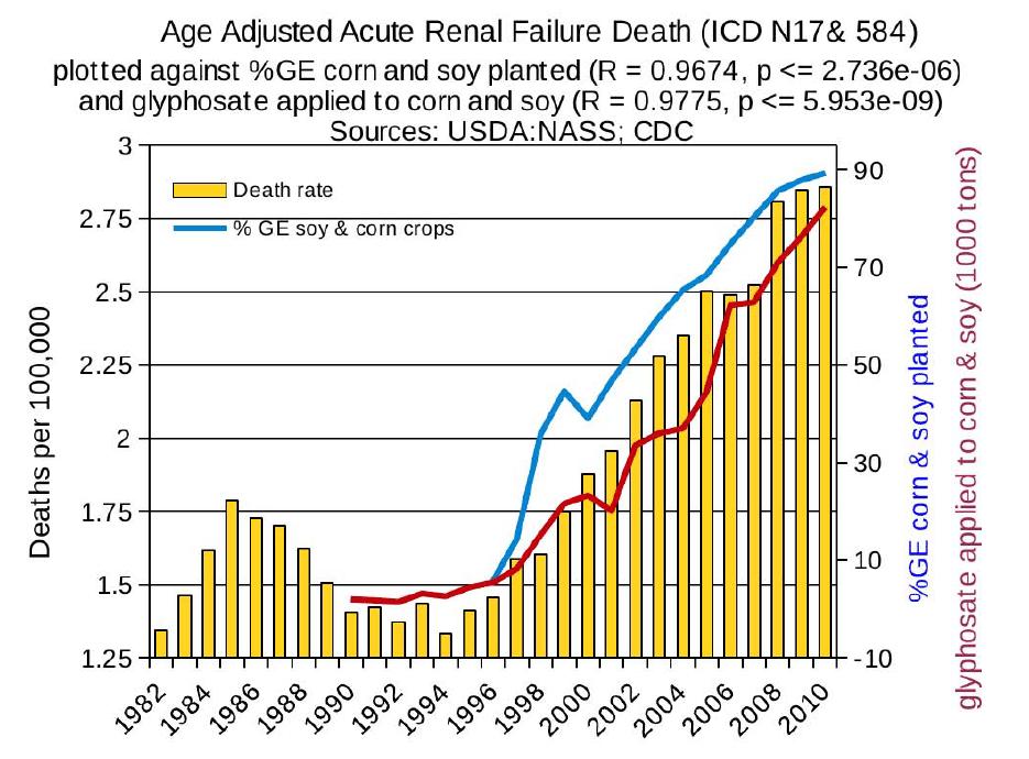 gmo19 acute renal failure deaths - 비과학적 양의학 73 - 신부전 치료 방법