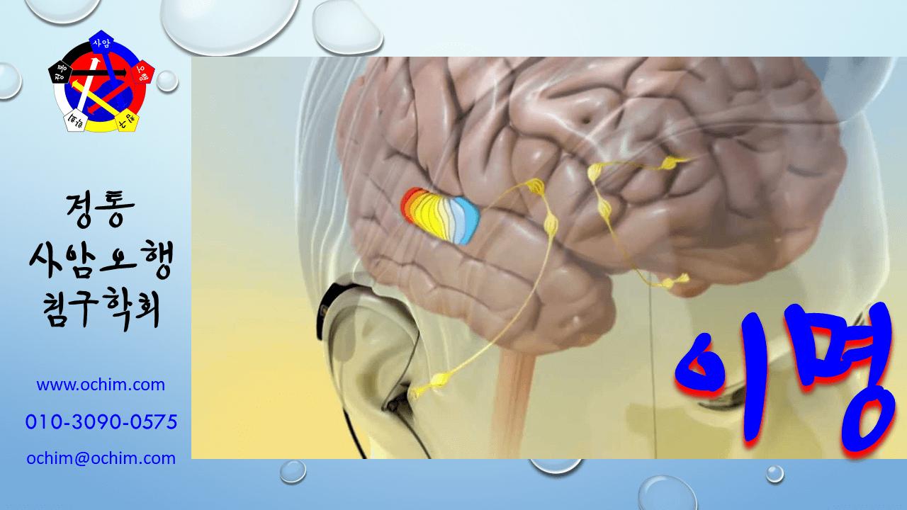 양의학 68 이명 치료 방법 - 비과학적 양의학 68 - 이명 치료 방법